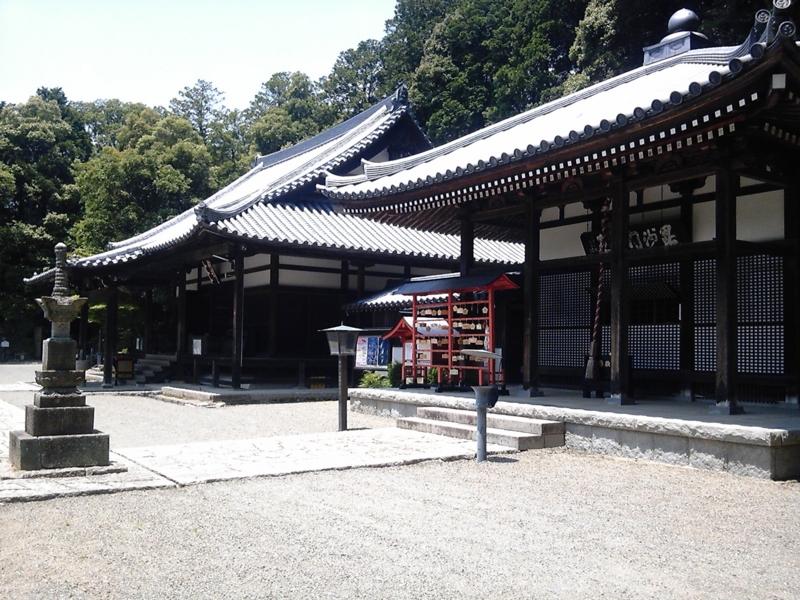 f:id:hiko-asiato:20150613120356j:image:w640