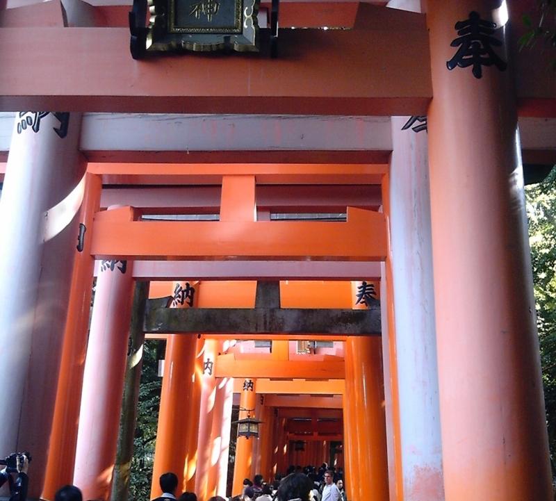 f:id:hiko-asiato:20151121102106j:image:w640