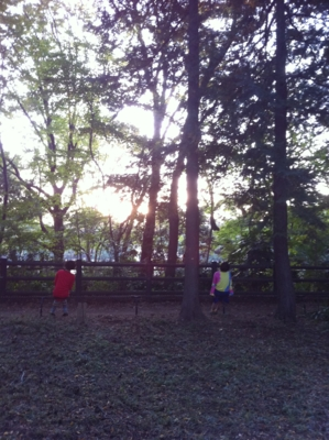 f:id:hiko1985:20121104161554j:image