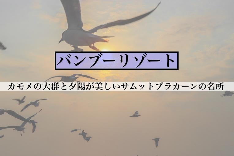 f:id:hiko_pro:20190218204025j:plain