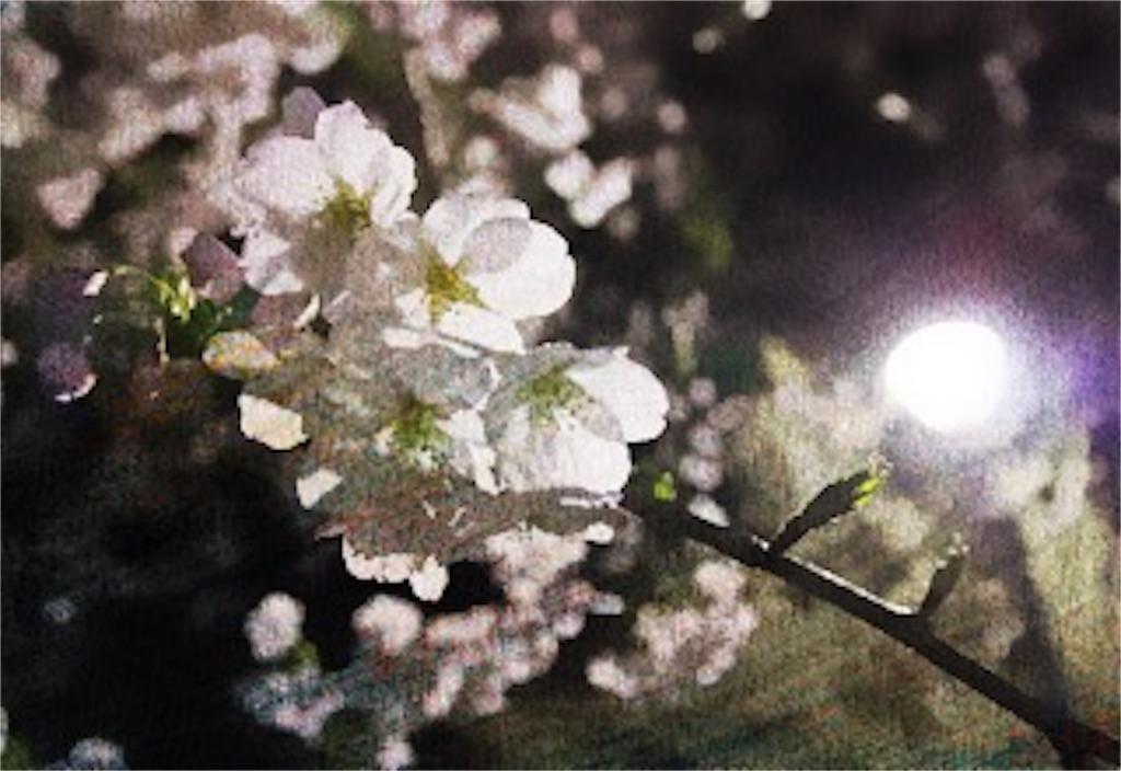 f:id:hikomaru-r:20170417214518j:image