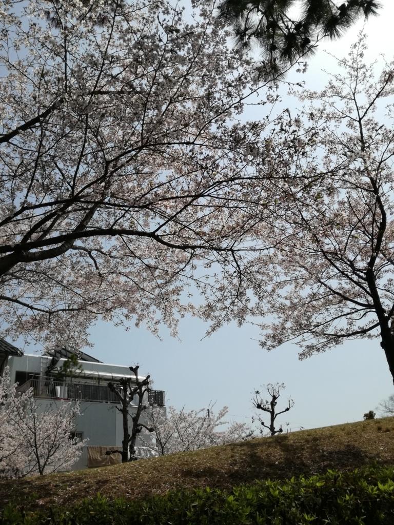 f:id:hikyosyua:20180724073427j:plain