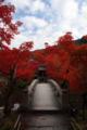 京都新聞写真コンテスト 石橋