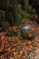 京都新聞写真コンテスト 山科聖天の散紅葉