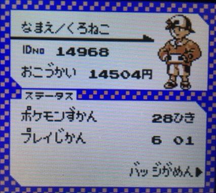 ポケモン金銀攻略 - プレイ時間