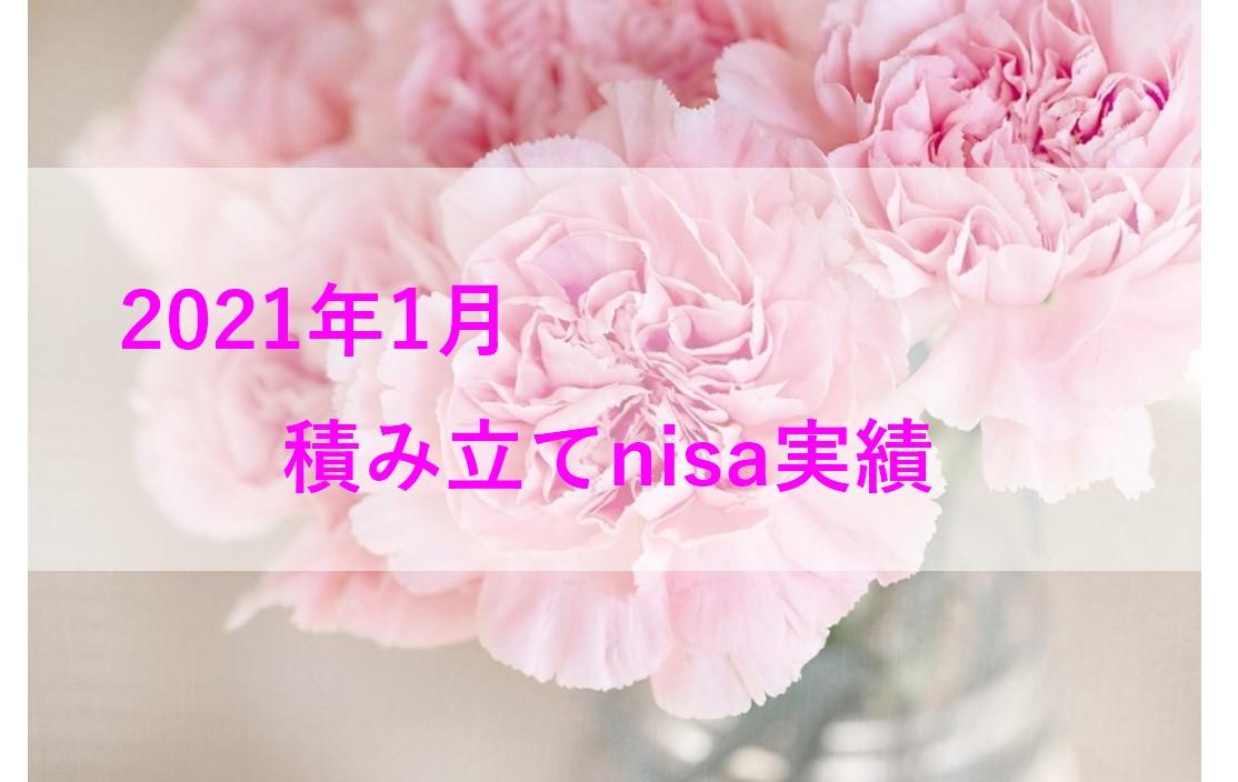 f:id:himari_ns:20210718213157j:plain