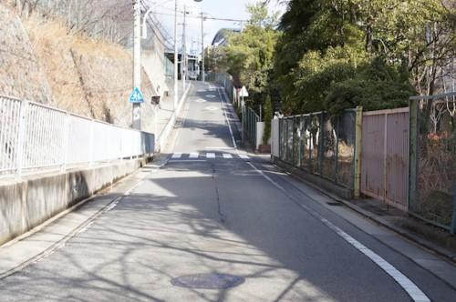f:id:himawari-c:20110102113049j:image