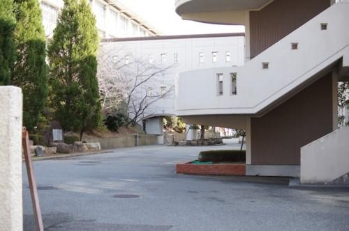 f:id:himawari-c:20110102113149j:image