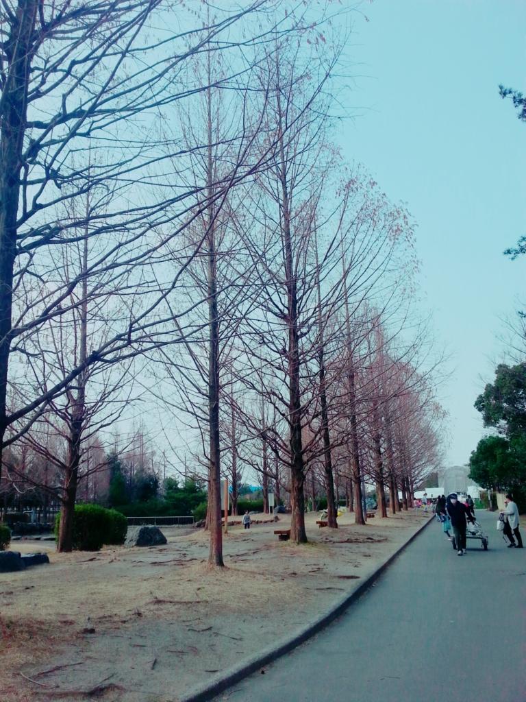 f:id:himawari0619:20170320003132j:plain