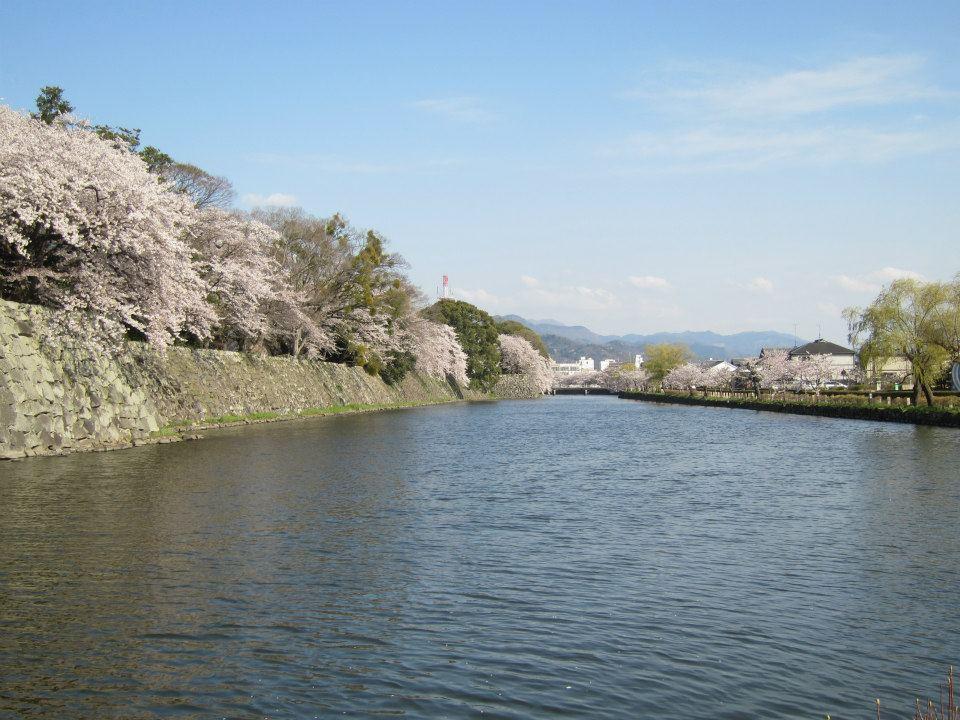 f:id:himawari0619:20170323130254j:plain