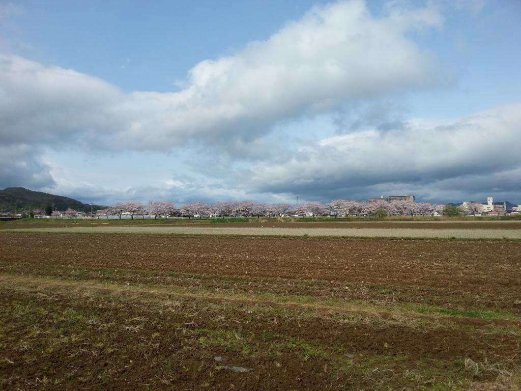 f:id:himawari0619:20170412181833j:plain