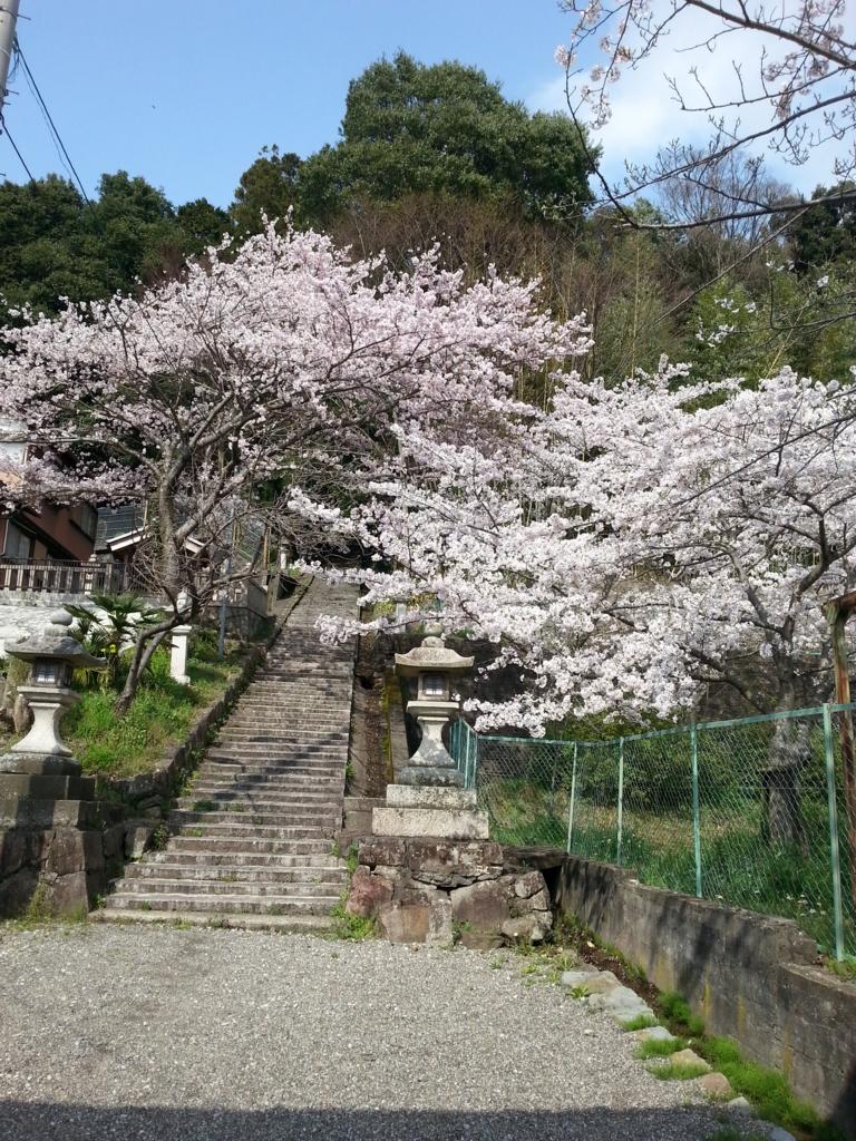 f:id:himawari0619:20170412182527j:plain