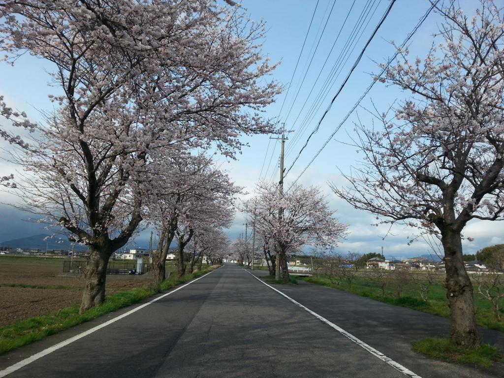 f:id:himawari0619:20170412182613j:plain