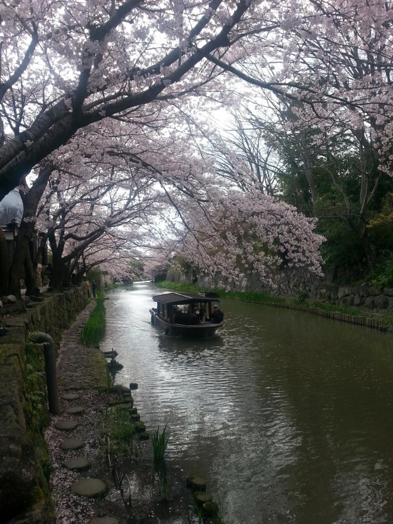 f:id:himawari0619:20170412182738j:plain