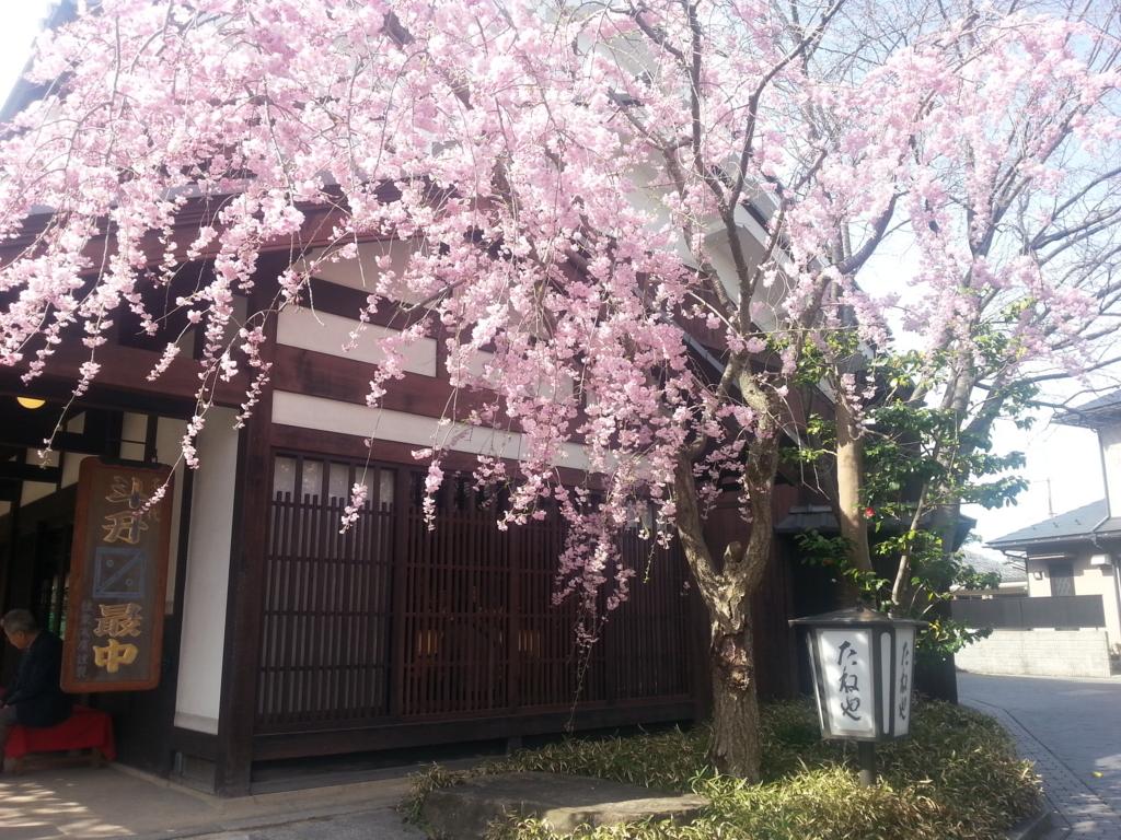 f:id:himawari0619:20170412205848j:plain