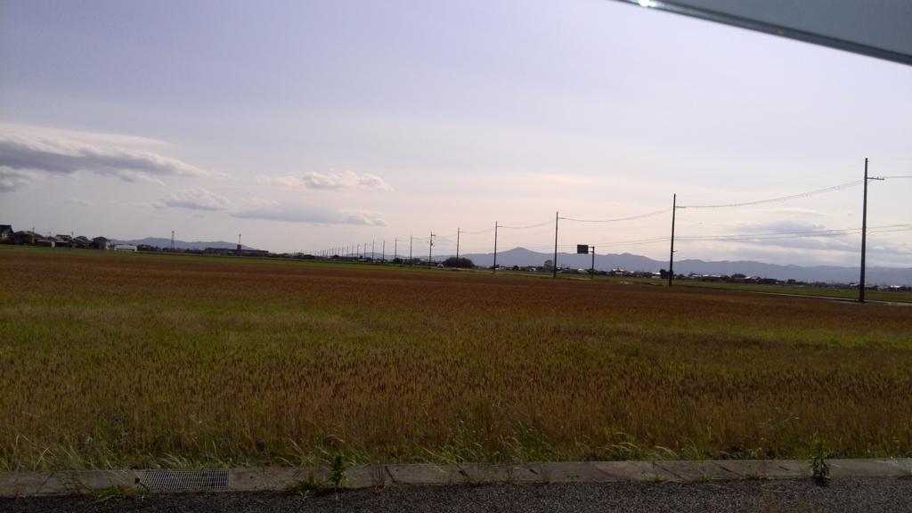 f:id:himawari0619:20170603165234j:plain