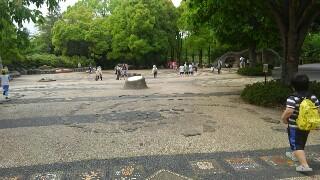 f:id:himawari0growing:20170507133240j:image