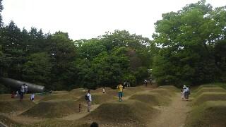 f:id:himawari0growing:20170507143345j:image