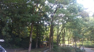 f:id:himawari0growing:20170829124423j:image