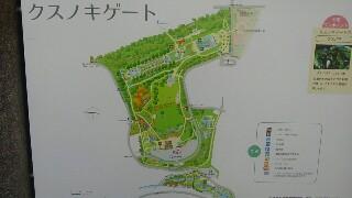 f:id:himawari0growing:20171009104747j:image