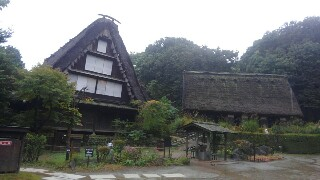 f:id:himawari0growing:20171021142026j:image