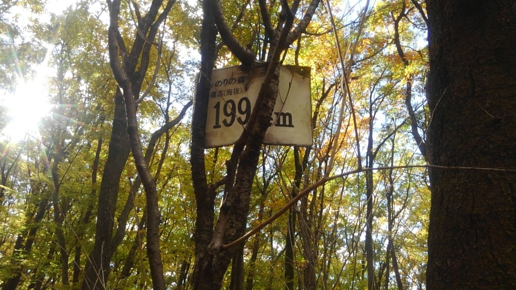 f:id:himawari0growing:20181123133551j:plain