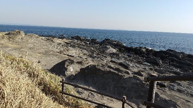 f:id:himawari0growing:20210211150911j:image