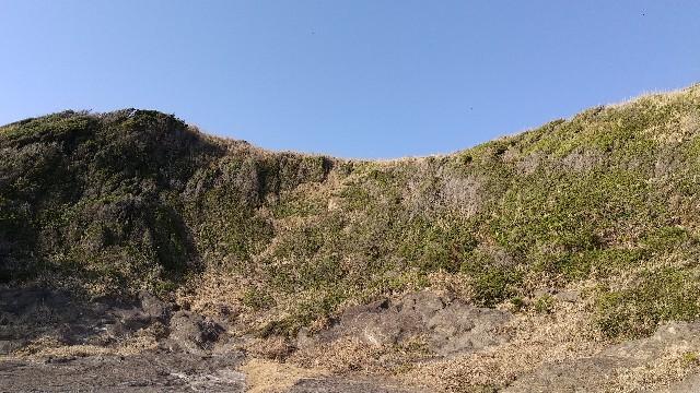 f:id:himawari0growing:20210211151801j:image