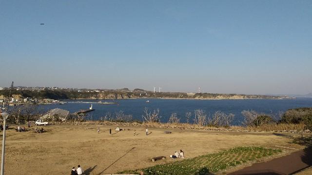 f:id:himawari0growing:20210211154306j:image
