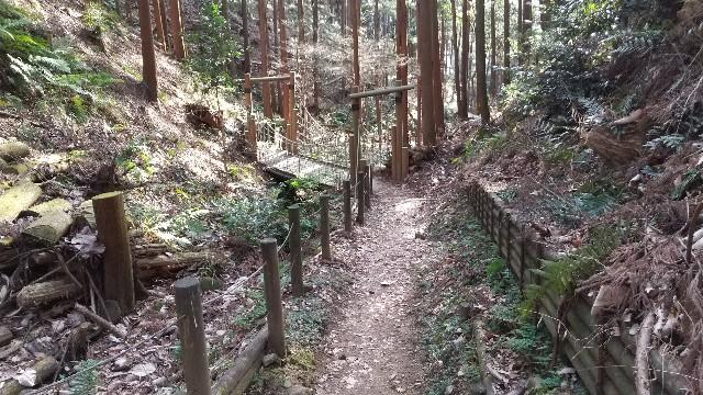 f:id:himawari0growing:20210214151719j:image