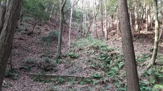 f:id:himawari0growing:20210214151851j:image
