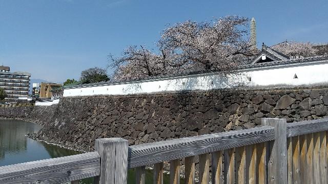f:id:himawari0growing:20210327105612j:image