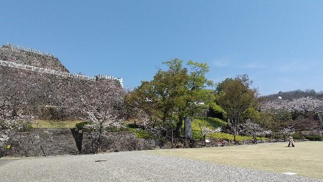 f:id:himawari0growing:20210327105816j:image