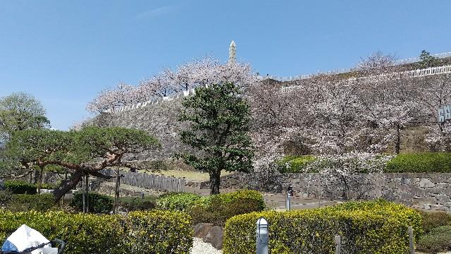 f:id:himawari0growing:20210327105849j:image