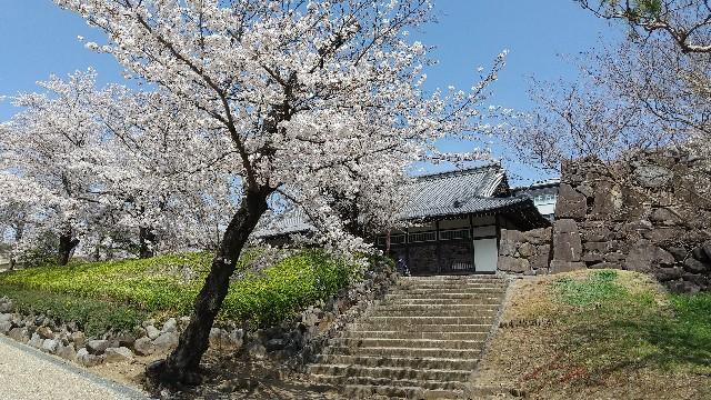 f:id:himawari0growing:20210327110238j:image