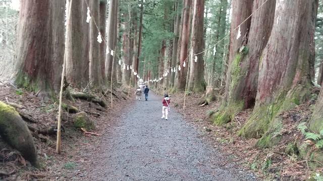 f:id:himawari0growing:20210502120053j:plain