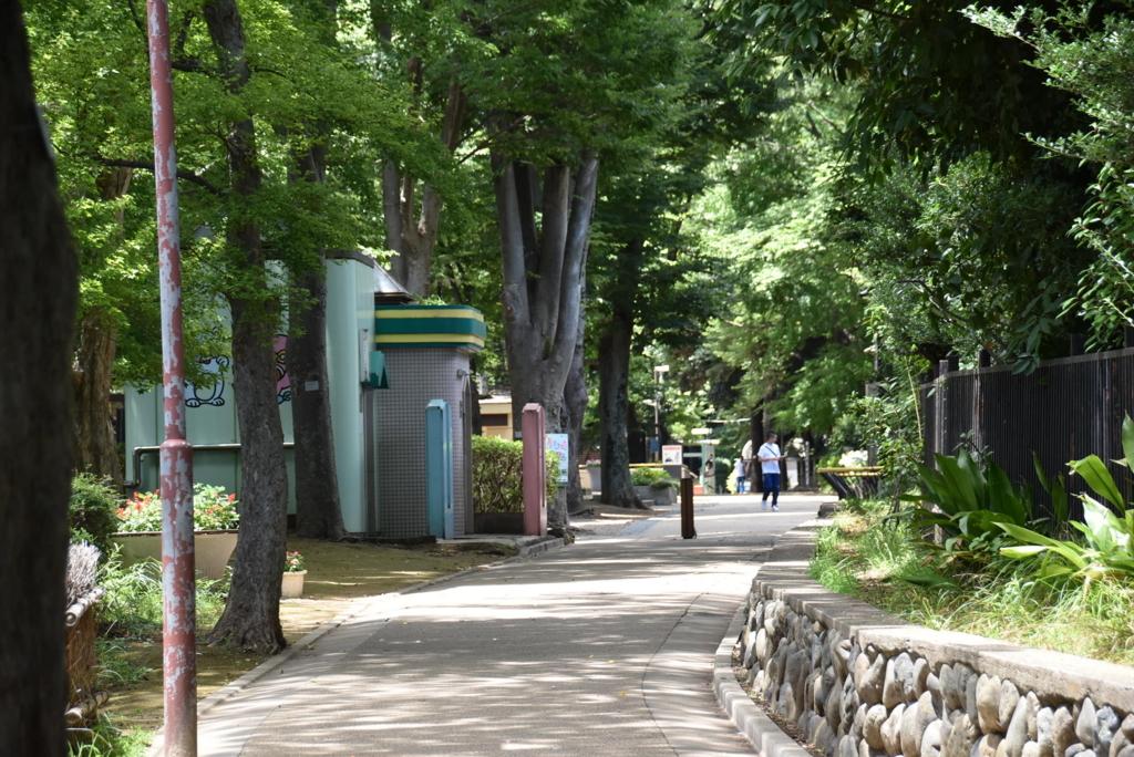 f:id:himawari1103:20170711210636j:plain