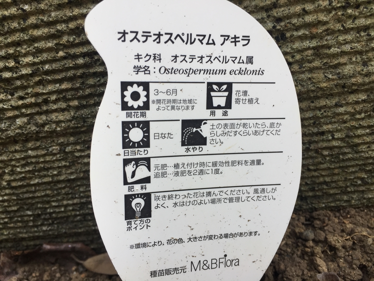 f:id:himawari1103:20200220124630j:plain