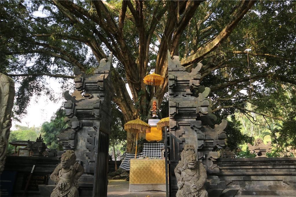 f:id:himawari2016:20181021013632j:plain