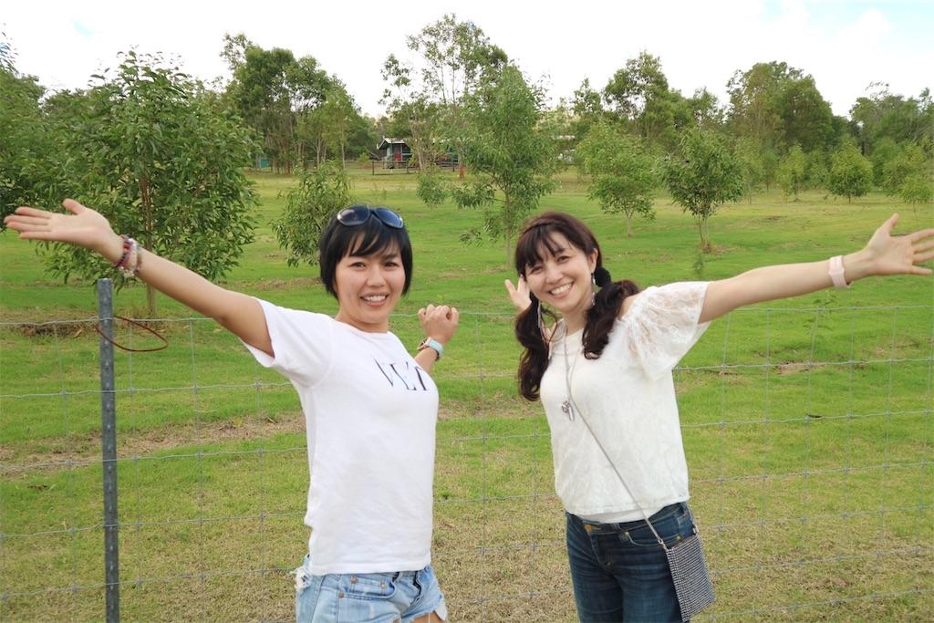 f:id:himawari2016:20190301170123j:image