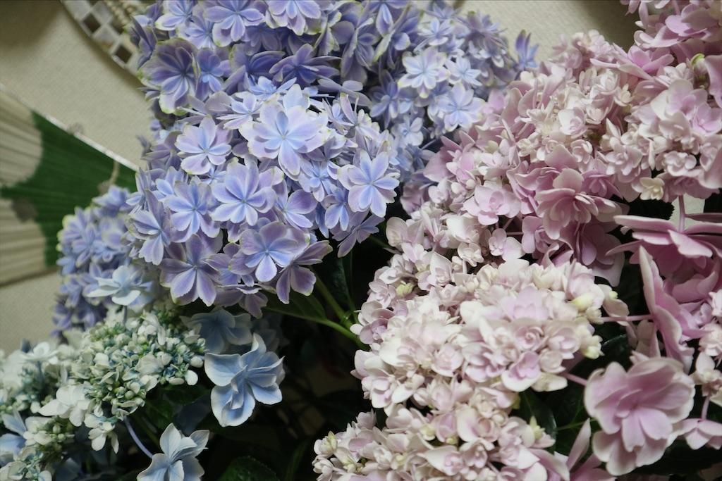 f:id:himawari2016:20200710192439j:image