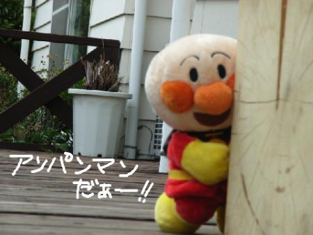 f:id:himawari39:20080529232245j:image