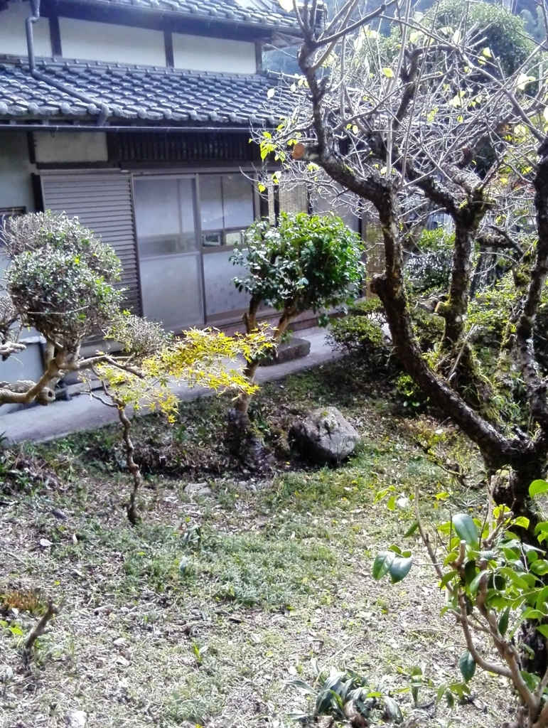 f:id:himawari87k:20161105134628j:plain