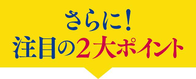 f:id:himawari928:20170605045005j:plain