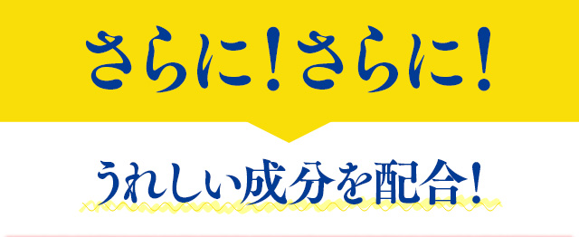f:id:himawari928:20170605045107j:plain