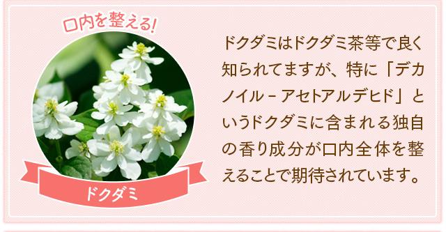 f:id:himawari928:20170605045120j:plain