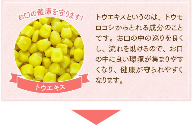 f:id:himawari928:20170605045157j:plain