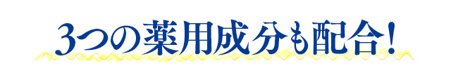 f:id:himawari928:20170605045212j:plain