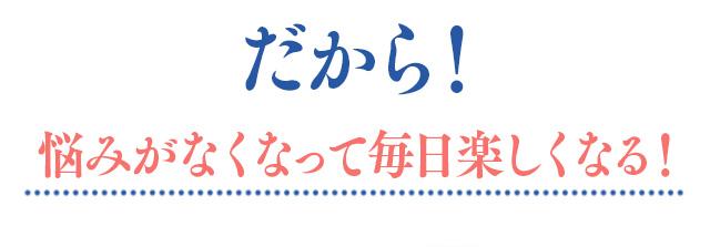 f:id:himawari928:20170605045531j:plain