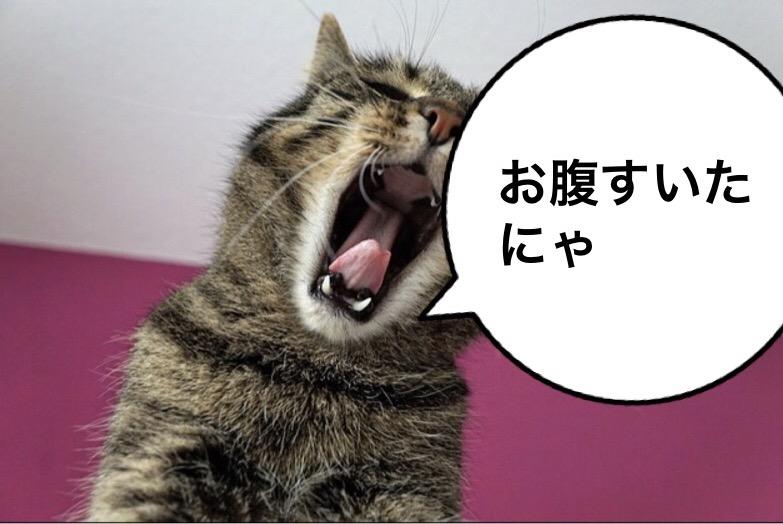 f:id:himawari928:20170910005335j:plain